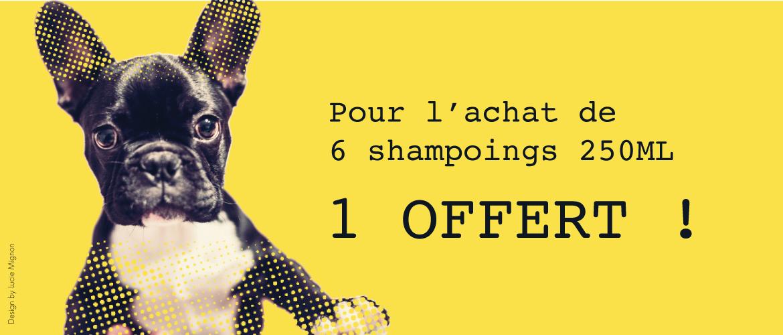 6 shampoings achetés 1 Offert